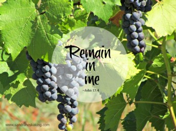 remain-in-me
